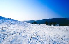 Uppingham in Snow