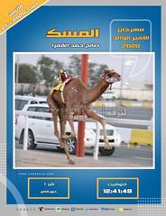 صور سباق الحيل والزمول (الأشواط العامة) مهرجان الأمير الوالد صباح  27-1-2020