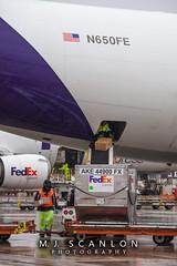 N650FE FedEx | Airbus A300F4-605R | Memphis International Airport