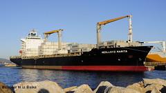 Barcos Algeciras