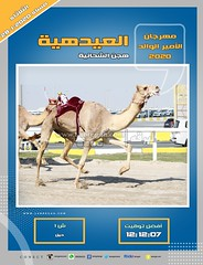 صور سباق الحيل والزمول (الأشواط المفتوحة) مهرجان الأمير الوالد مساء 28- 1-2020
