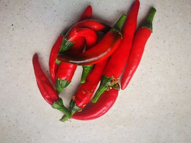 piri-piri pepper