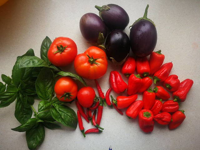 Harvest from the front lawn