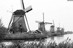 Niederlande/Netherlands/Nederland