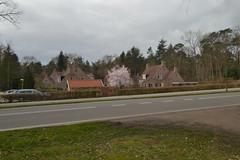 Reggehof, Ommen (136FJAKA_3335)