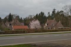Reggehof, Ommen (136FJAKA_3341)