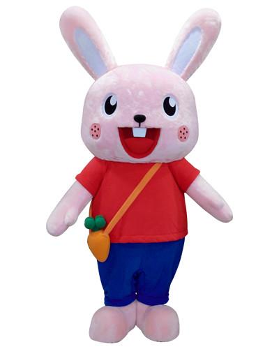 南一書局-貝比兔