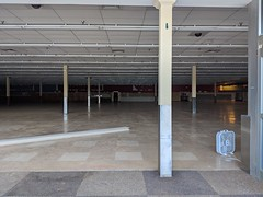 Food Lion (Closed) - Fredericksburg, VA (Kings Hwy)