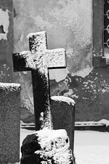 Gravestone in the Dubi Cemetery in Winter