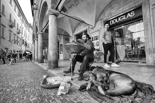 street artist and hs dog