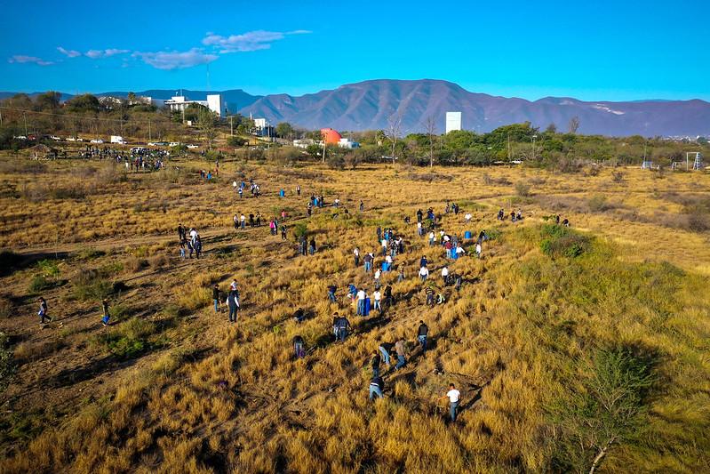 """TAM-011-2020.-Reforesta Regierung von Tamaulipas """"El Refugio"""" State Park (4)"""