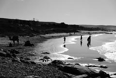 Taghazout - Beach life