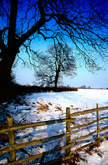 Uppingham in Snow 6