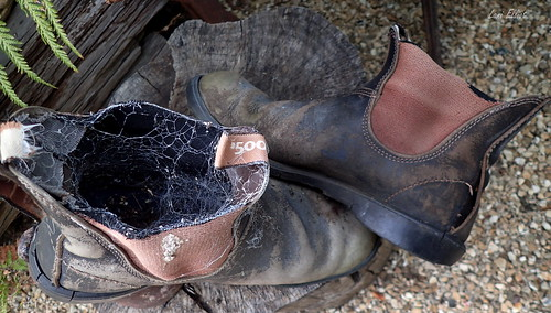 A Tale of Two Boots - Looking close....on Friday!