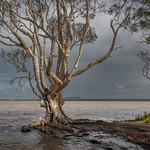 Last Light Before the Storm by Steve Baldwin