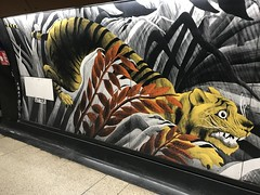 Crouching Tiger, Hidden Roundel