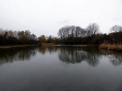 GOC Welwyn Garden City 036: Northern lake, Stanborough Park