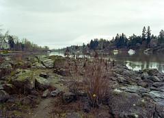 Willamette River Oregon