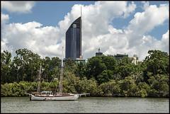 Brisbane Botanical Gardens-1=