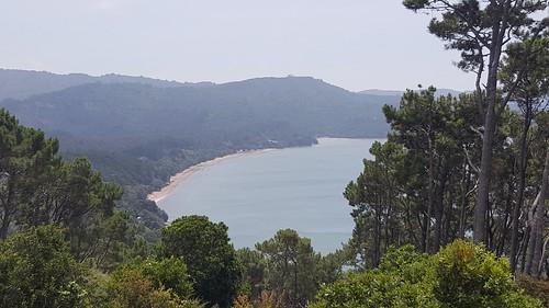 Cornwallis beach