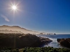 USA: CA, Point Lobos