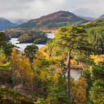 Autumn in Glen Affric by Iain Houston