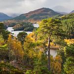 Autumn in Glen Affric by Iain Houston
