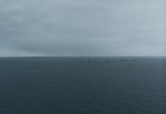 Winter at the Sea