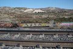 SoCal Train Car Graffiti 02-01-2020