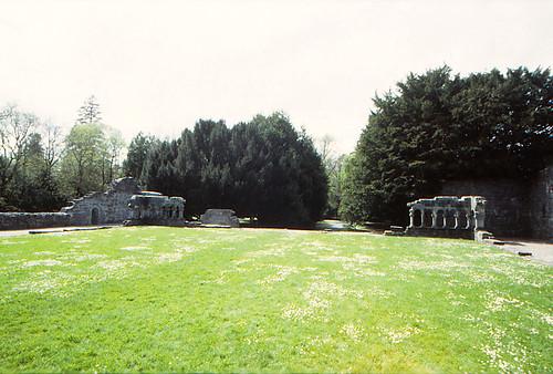 Cong Abbey