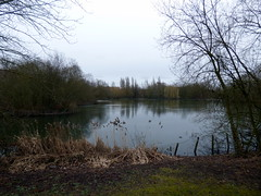 GOC Welwyn Garden City 039: Northern Lake, Stanborough Park