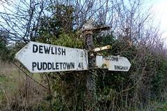 Dorset fingerposts