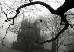 """Cincinnati - Spring Grove Cemetery & Arboretum """"Dexter Mausoleum In Foggy Morning"""""""
