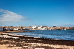 Majanicho. Playa. La Oliva. Fuerteventura