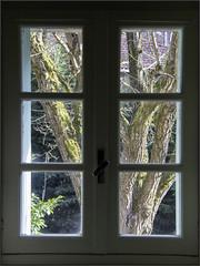 Through My Window - Photo of Saint-Bertrand-de-Comminges