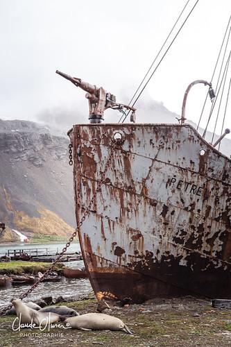 La station baleinière de Grytviken
