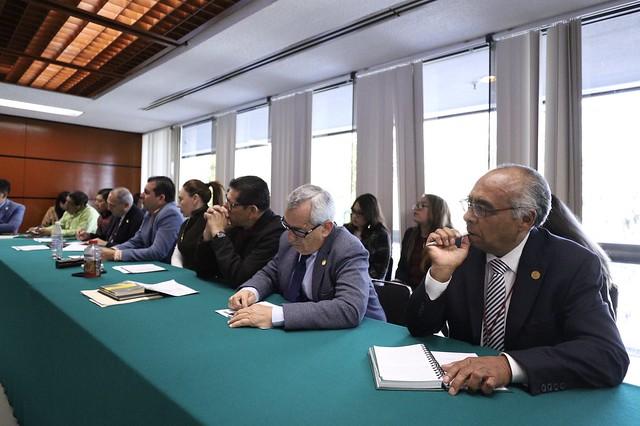 31/01/2020 Plenaria GP Morena. Mesa Reforma Política