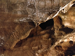 Limestone formations in Gough's Cave