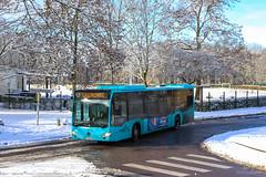 LE MET' / Mercedes-Benz Citaro C2 n°1734