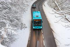 LE MET' / Mercedes-Benz Citaro C2 n°1631
