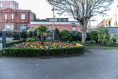 THE PEOPLE'S PARK [IN DUN LAOGHAIRE]-159926
