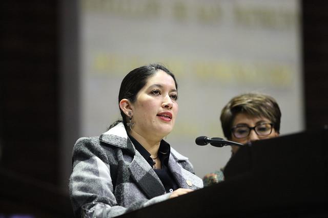05/02/2020 Tribuna Dip. Rocío Villarauz