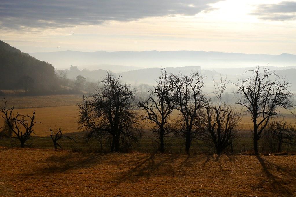 Mystischer Morgen / Mystic morning