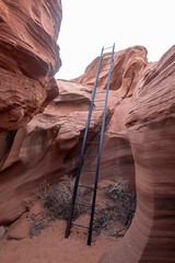 Ladder Out From Rattlesnake Canyon