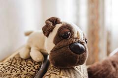 Stuffed English Bulldog Toy With Big Eye