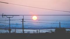日出前的反思