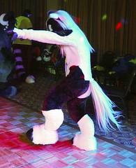 Mephit Furmeet 2019 - Dances 223 - Dakota