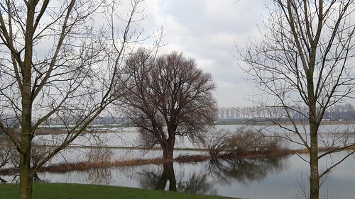 High water on river Maas at Alem