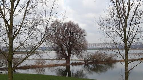 High water on river Maas at Alem