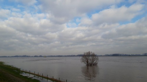 High water on river Waal